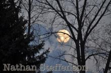 full moon between trees