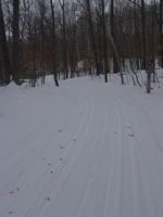 cross country ski trail Kathio